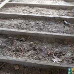 Демонтаж деревянного пола на лагах  фото