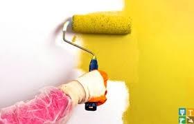 Высококачественная покраска стен (2-3 слоя)